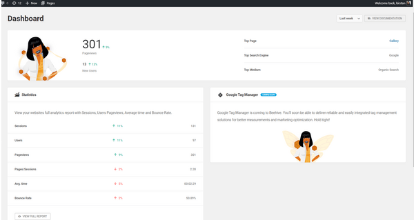 Screenshot of an overview of Beehive's dashboard.